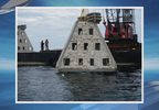 ARTIFICIAL REEFS_frame_328.png