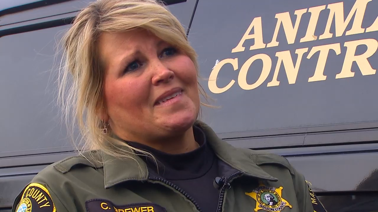"""I feel really sad for Mason County,"" former Mason County Animal Control Officer Cindy Brewer said. ""I don't know what's going to happen. I don't know what's going to happen to the animals."" (Photo: KOMO News)"
