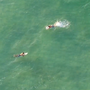 SKY3 DRONE:  Amazing video of surfers on Pensacola Beach
