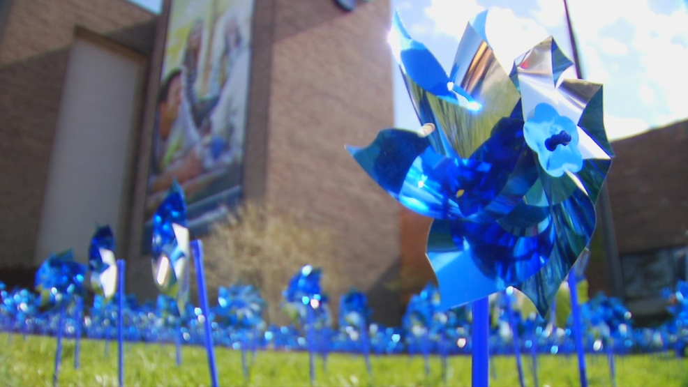 Park Ridge Health Is Helping Prevent Child Abuse    With A Garden Of  Pinwheels. The Goal Of The Garden Is To Bring Attention To The Problem, ...