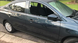 Thief breaks almost a dozen car windows in Mobile neighborhood