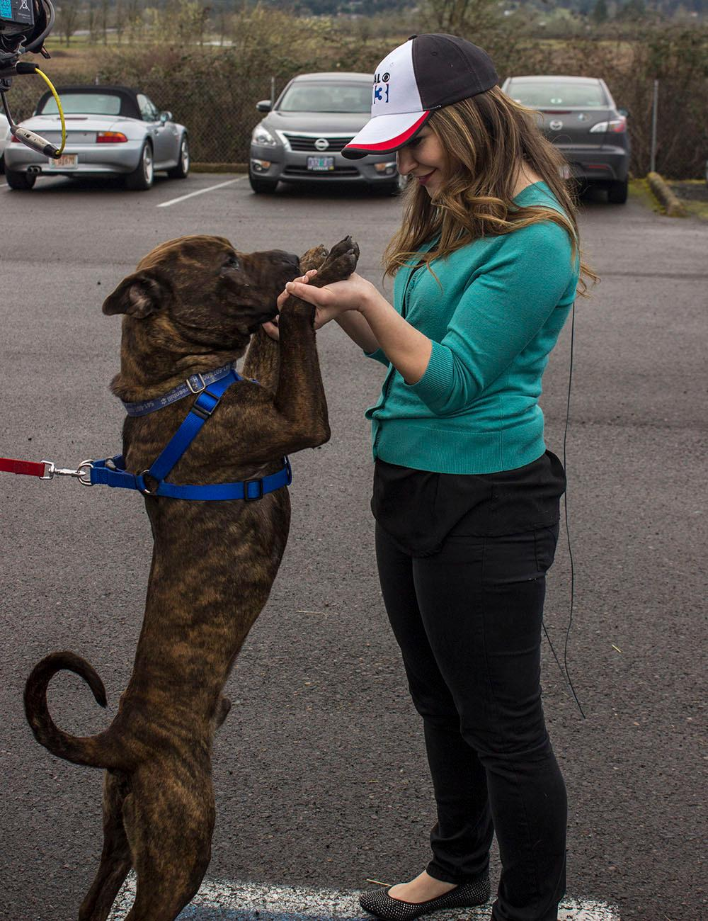 KVAL News teamed up with Greenhill Humane Society Tuesday, March 14, 2017 to raise money for shelter pets and new facilities. To make a donation, call (541) 689-0983 or visit http://www.green-hill.org/donate/. Photo by Amanda Butt