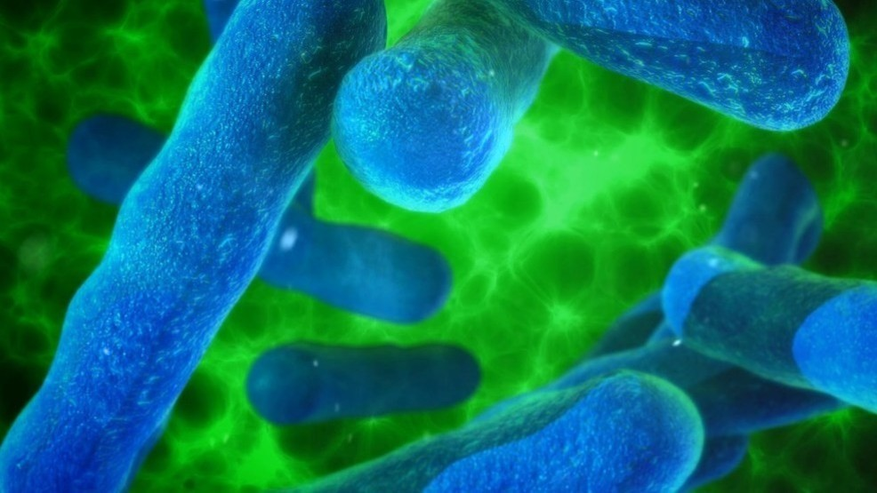 Maine CDC: Legionella bacteria eliminated from water source