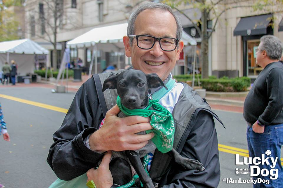 Lucky Dog also happens to be the organization DC Refined partners with for our annual Bachelors and Puppies photoshoot! (Image: Courtesy Lucky Dog Animal Rescue)