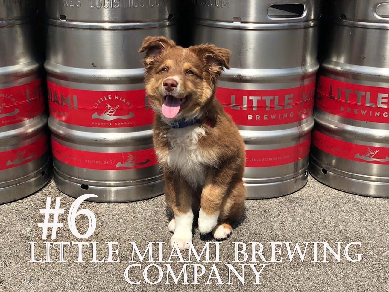 Need a taproom stop? Little Miami Brewing Company is a seven-barrel brewery that offers brick oven pizzas to pair with your craft beer. You'll find it along the Little Miami River and Bike Trail at the edge of Old Milford. ADDRESS: 208 Mill Street, Milford, OH (45150) / Background image courtesy of Instagram user @littlemiamibrew   via Discover Clermont // Published: 11.28.20