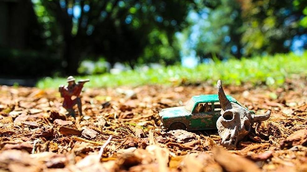Metal detecting finds nickels, dimes, Bronze Stars, murder ...