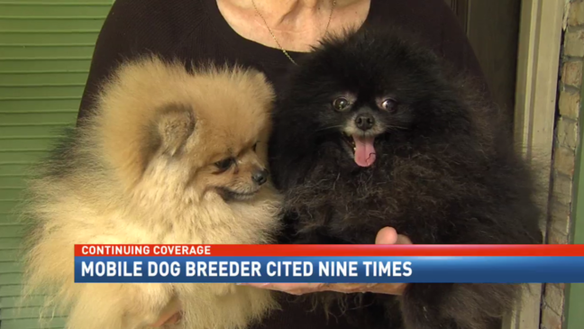 Mobile dog breeder cited 9 times by the city