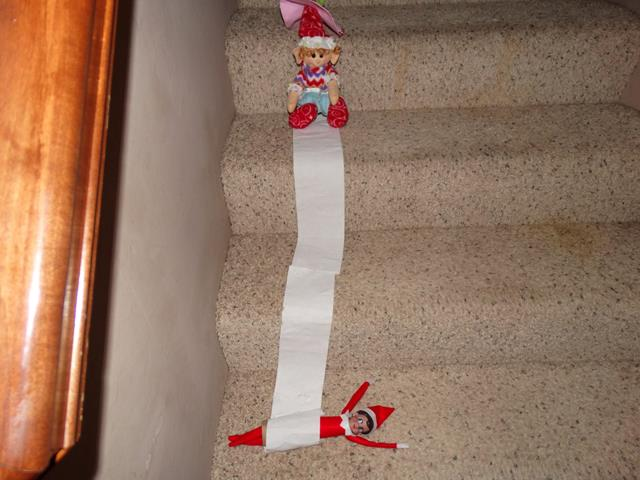Peppermint the Elf pushed Hermie the Elf down the stairs in a TP roll.
