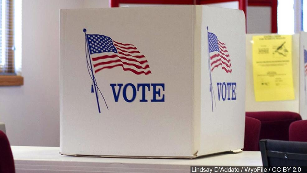 Palm Beach County Voting Results