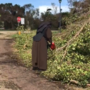 Sister Margaret armed with a chainsaw... But in a good way!