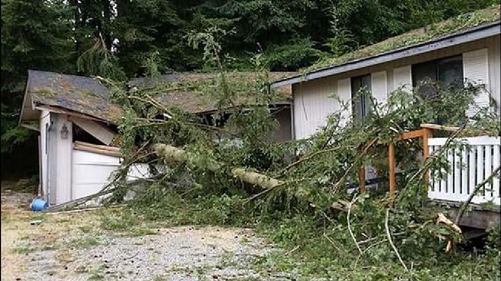 One year ago Monday was Seattle's greatest August windstorm on record