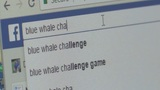 Good Question: What is the Blue Whale Challenge?