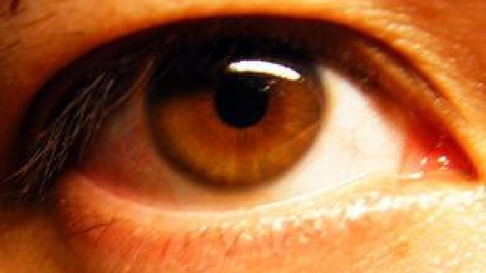 retinal disparity essay