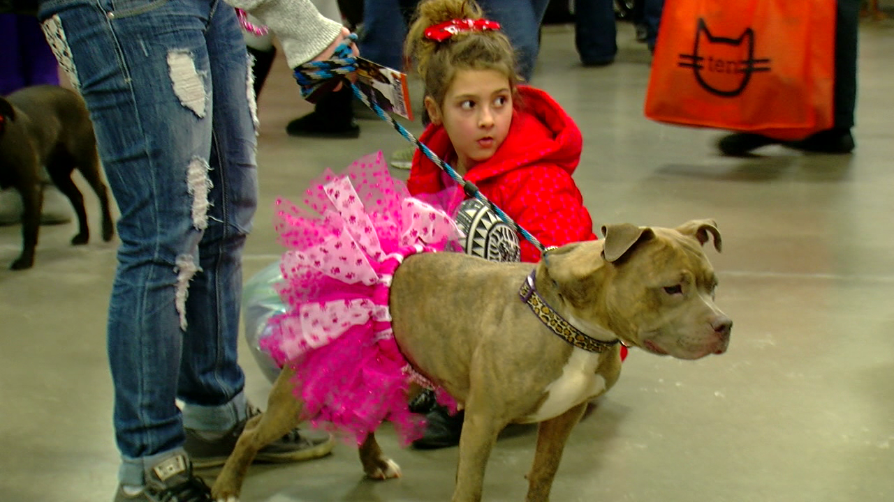 Your valentine might have four legs this year. (WKRC)