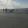 More than 700 people 'Run for Adela' on Sullivan's Island