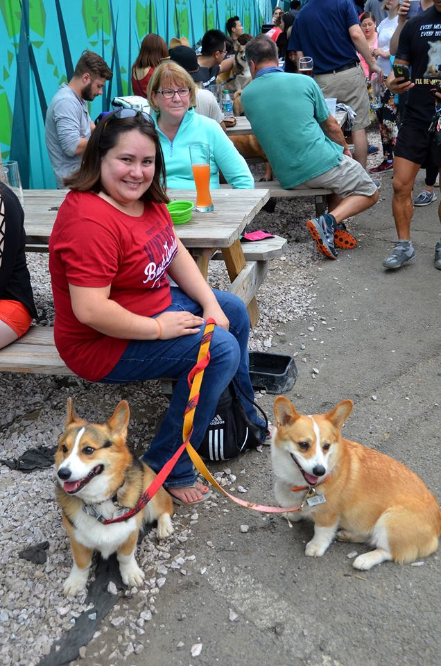 "There are few things in life we love more than a bunch of dogs all in one place that we can go nutty over! So naturally, Derpin' in DC: Corgtoberfest was right up our alley! Hundreds of stumpy-legged fluff monsters and their humans descended on Tysons Biergarten for the fourth annual Corgi meetup, though it was an all-inclusive event with many other breeds making an appearance as well. There was a costume contest for the dogs and stein-drinking competitions for their two-legged counterparts, followed by several heats of corgi races. Boy can those stumpy little furballs run! You may see some familiar faces as several ""insta stars"" were present, including Navy, Moogle, Waffles, Jasper and Biscuit. Plus, our friends from We The Dogs DC were repping! (Image: Randy Bachand Photography)"