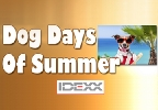 Dog Days Of Summer Photo Contest