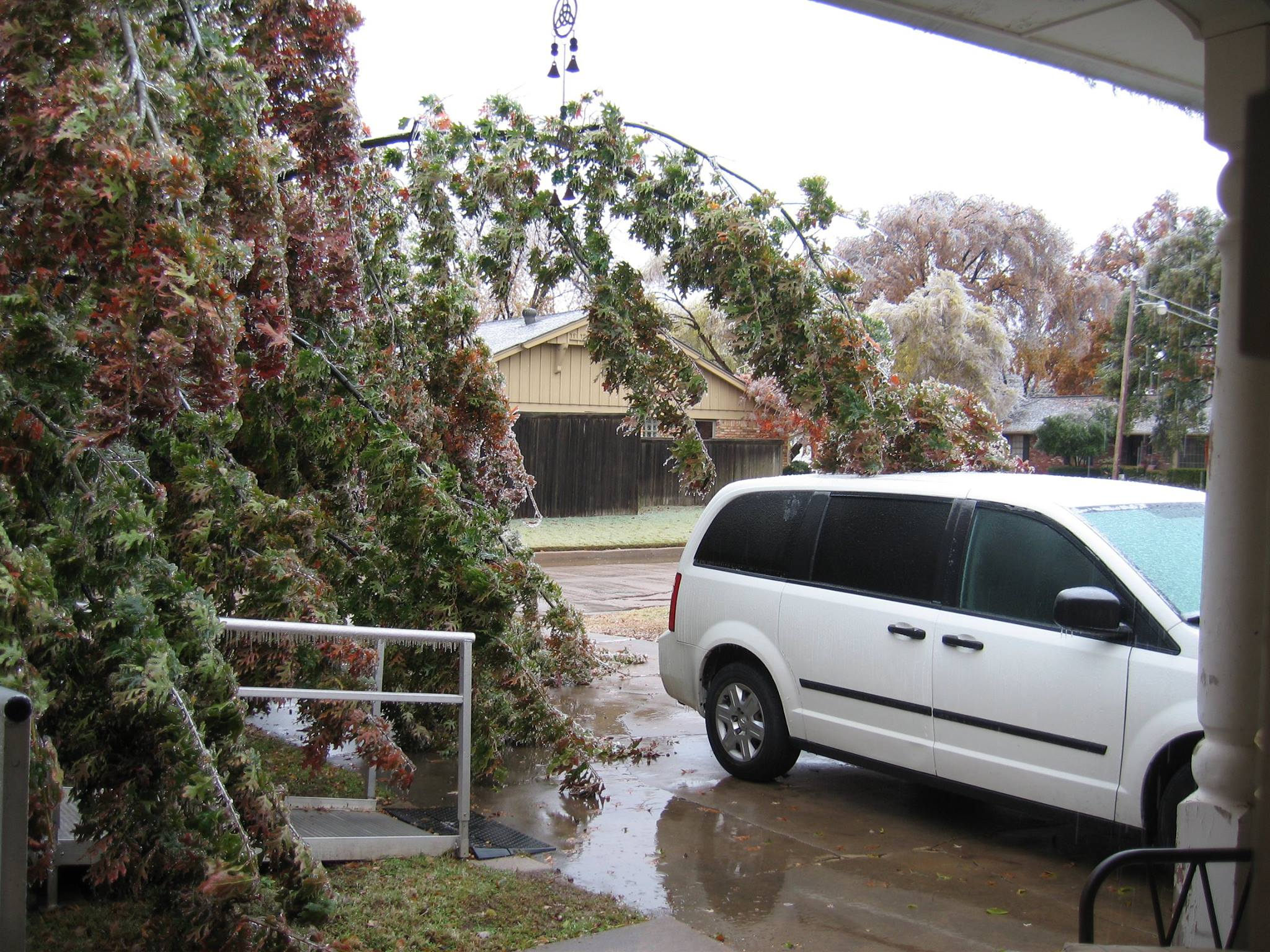 Looking at everyone's pics of the ice storm. This is what My front yard looked like yesterday.  from Marissa Shirley