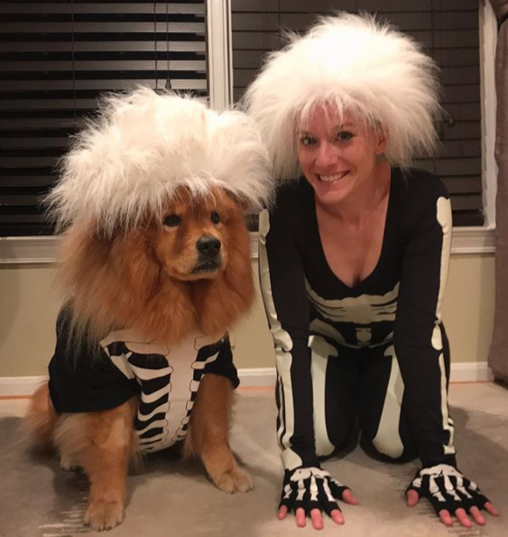 IMAGE: IG user @izzy_the_chow/ POST:{&amp;nbsp;}Happy Chow-llaween!!<p></p>