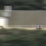 Greyhound racing in West Virginia is on its last leg