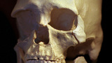 It was 20 years ago that bones of Kennewick Man were found