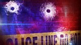 Man shot in Robeson County