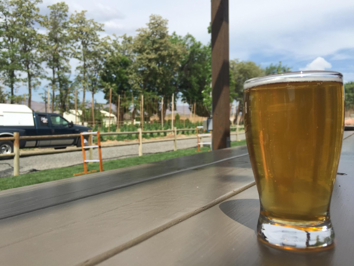 Bale Breaker Brewing Company's tasting room often has food trucks outside, games on their lawn, and tables on the patio to soak up the sun. (Image: Frank Guanco)
