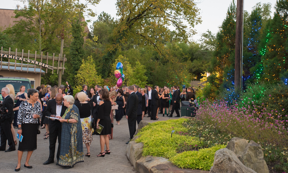 Zoofari 2017: Congo - A Hidden Beauty was held at the Cincinnati Zoo on Friday, September 15. A black tie affair, attendees enjoyed cocktails, light bites, dessert, and personal interactions with several animals. / Image: Sherry Lachelle Photography // Published: 9.16.17