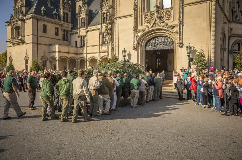 Carrying the 34-foot Fraser fir through the front doors of Biltmore House, 2016. (Photo Credit: The Biltmore Company)