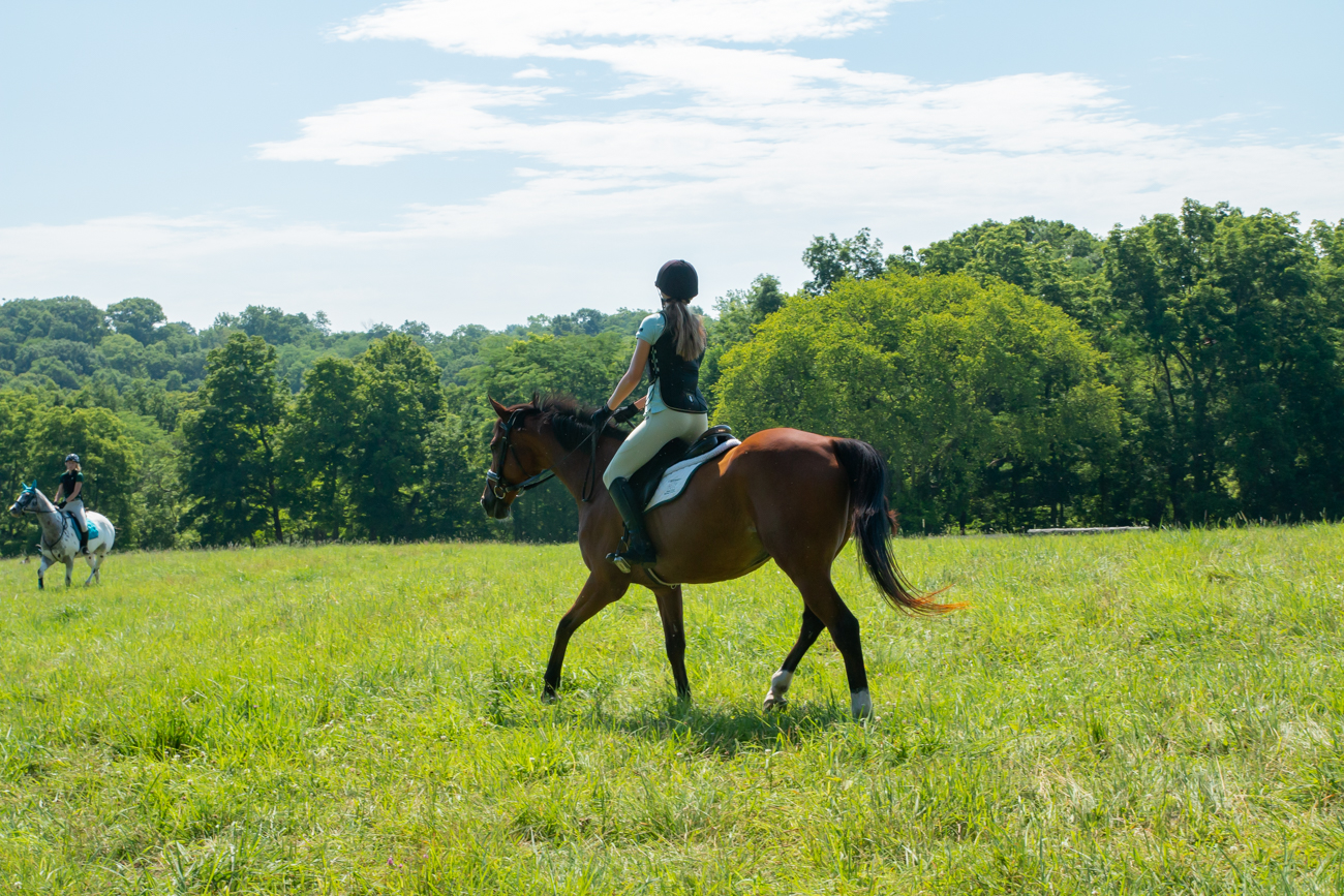 Greenacres Equine Center also offers a program called Stablemates that's dedicated to providing at-risk youths with free horseback riding and other hands-on activities. / Image: Elizabeth A. Lowry // Published: 8.3.19