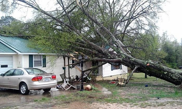 A tree fell on a home in Fayette County during strong storms on Thursday, April 11, 2013.