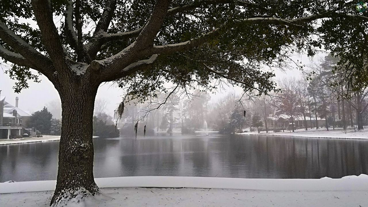 Florence, SC (Submitted by{&amp;nbsp;}Karen Creel)<p></p>