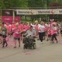 Springfield's 5th Annual Race for the Cure