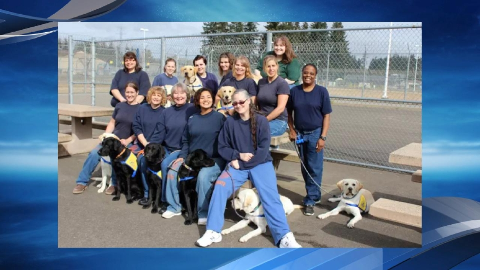 Coffee Creek Puppy Program Hopes To Expand Service Dog Training On