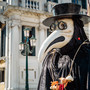 Time to break out the giant bird masks: the plague has hit Arizona