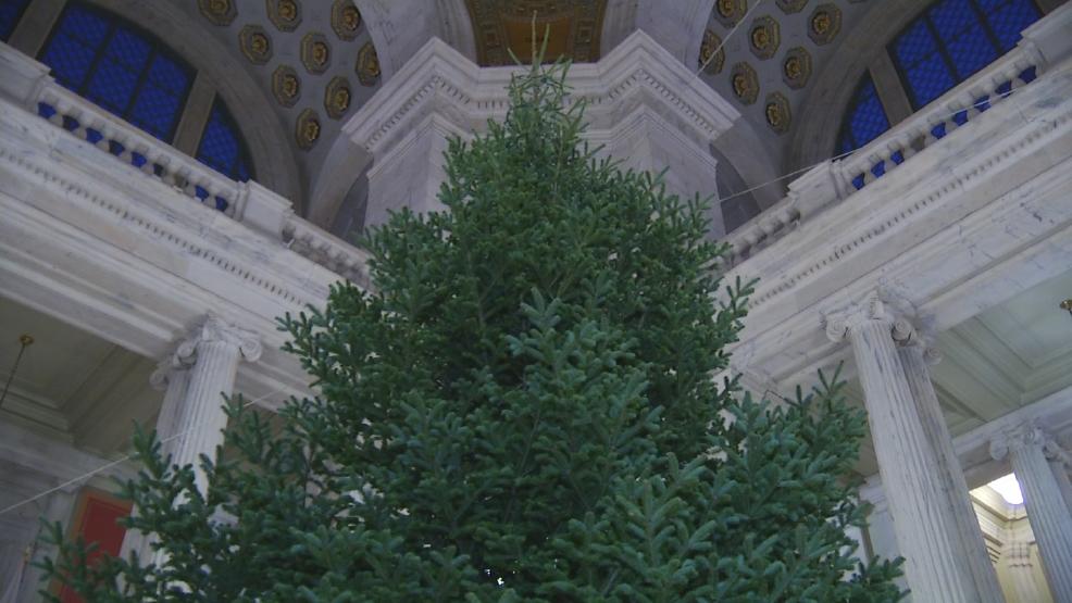 raimondo sets state house christmas tree lighting