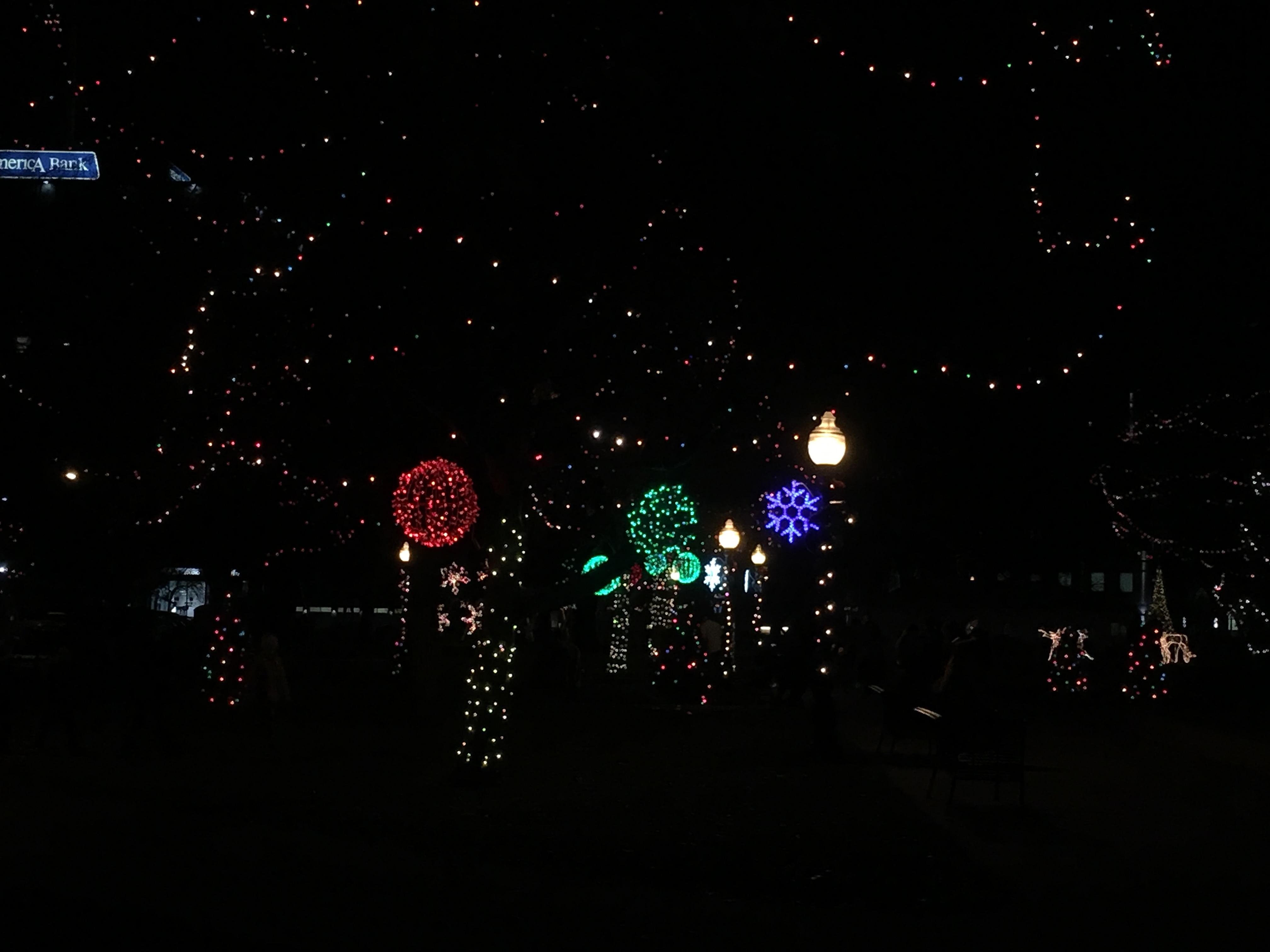 Bronson Park turned into a Christmas Wonderland on Friday, Nov. 23, 2018,{ } as the tree and other holiday lights were switched on shortly after sunset. (WWMT/Jason Heeres)