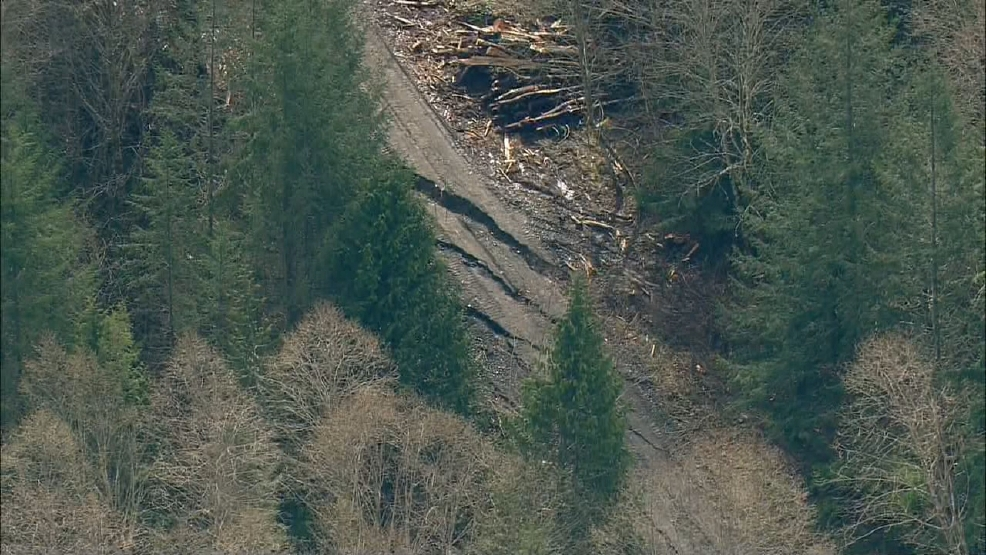 The location is about 1.5 miles away from the site of the March 22, 2014 mudslide. The area of the slide near Oso is about an hour's drive north of Seattle, and was being tracked by geologists Monday for ground movement. April 10, 2017 (KOMO Photos)