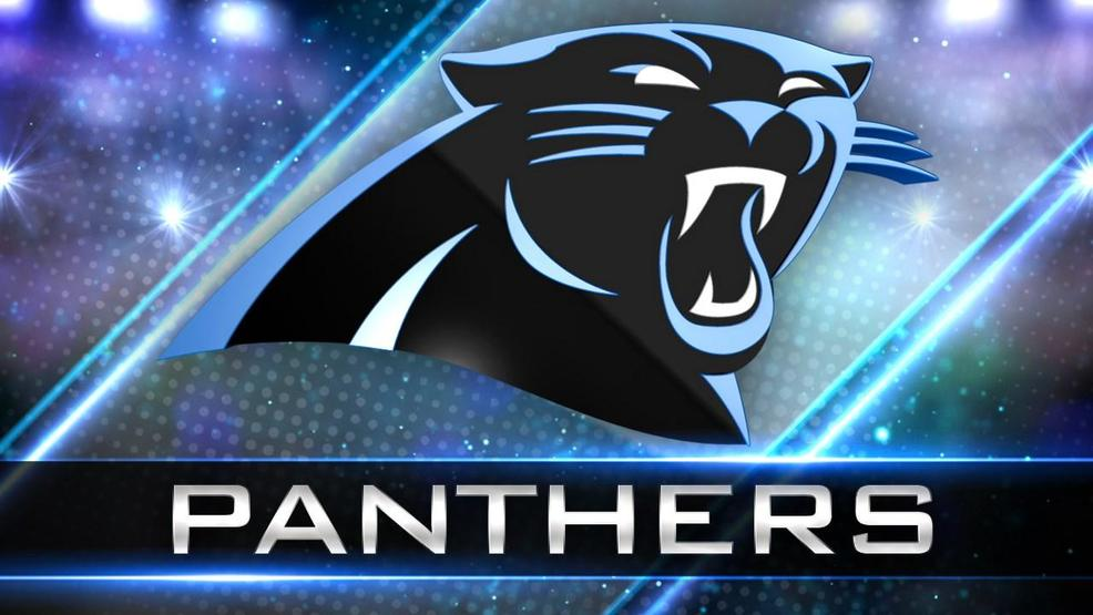 Carolina Panthers (MGN Online)