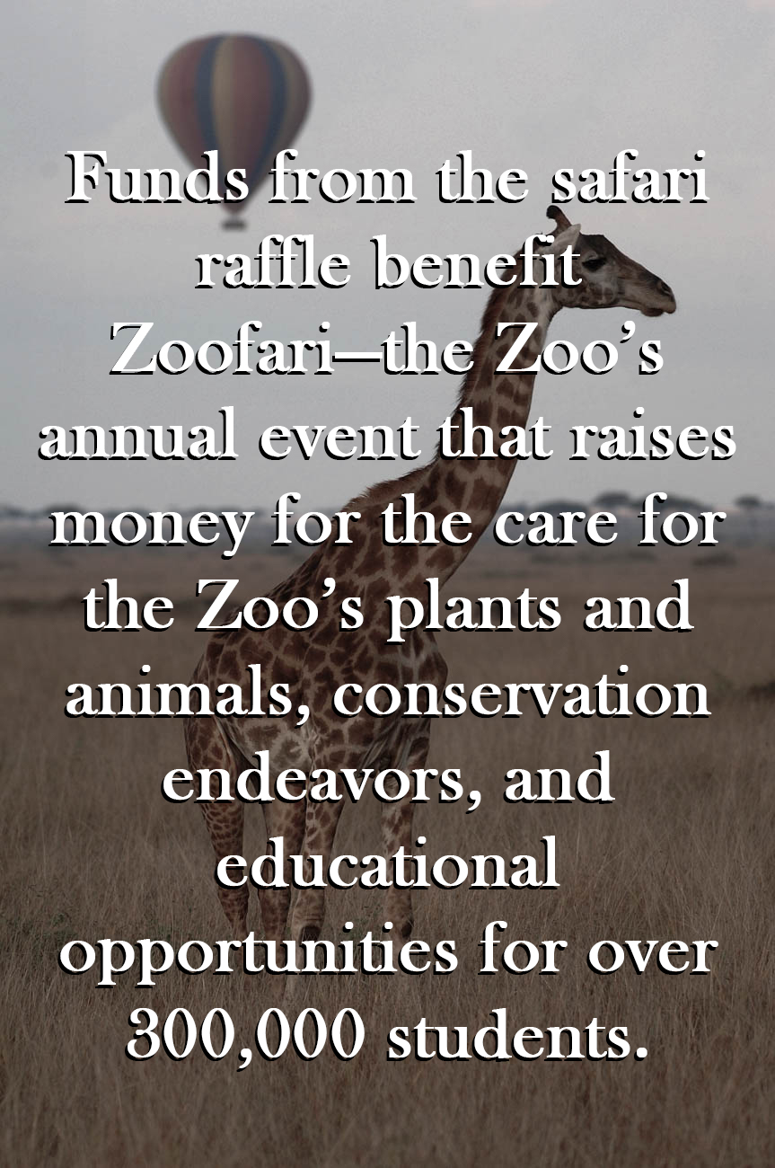 Zoofari Raffle: Kenya Under Canvas / Background image courtesy of the Cincinnati Zoo & Botanical Garden // Published: 7.8.19