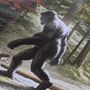 Believers share stories of sightings at Bigfoot conference