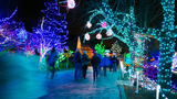 Gallery: Winter Garden aGlow creates winter wonderland for visitors