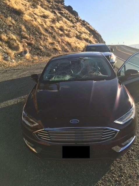 Damage after a sheep jumps on a car on US-97A near Wenatchee (Photo: Washington State Patrol)<p></p>
