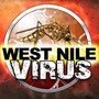 Two new West Nile cases bring total in El Paso to 13