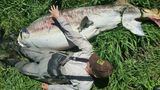 500-pound sturgeon found dead at Klamath Lake, likely 60-70 years old