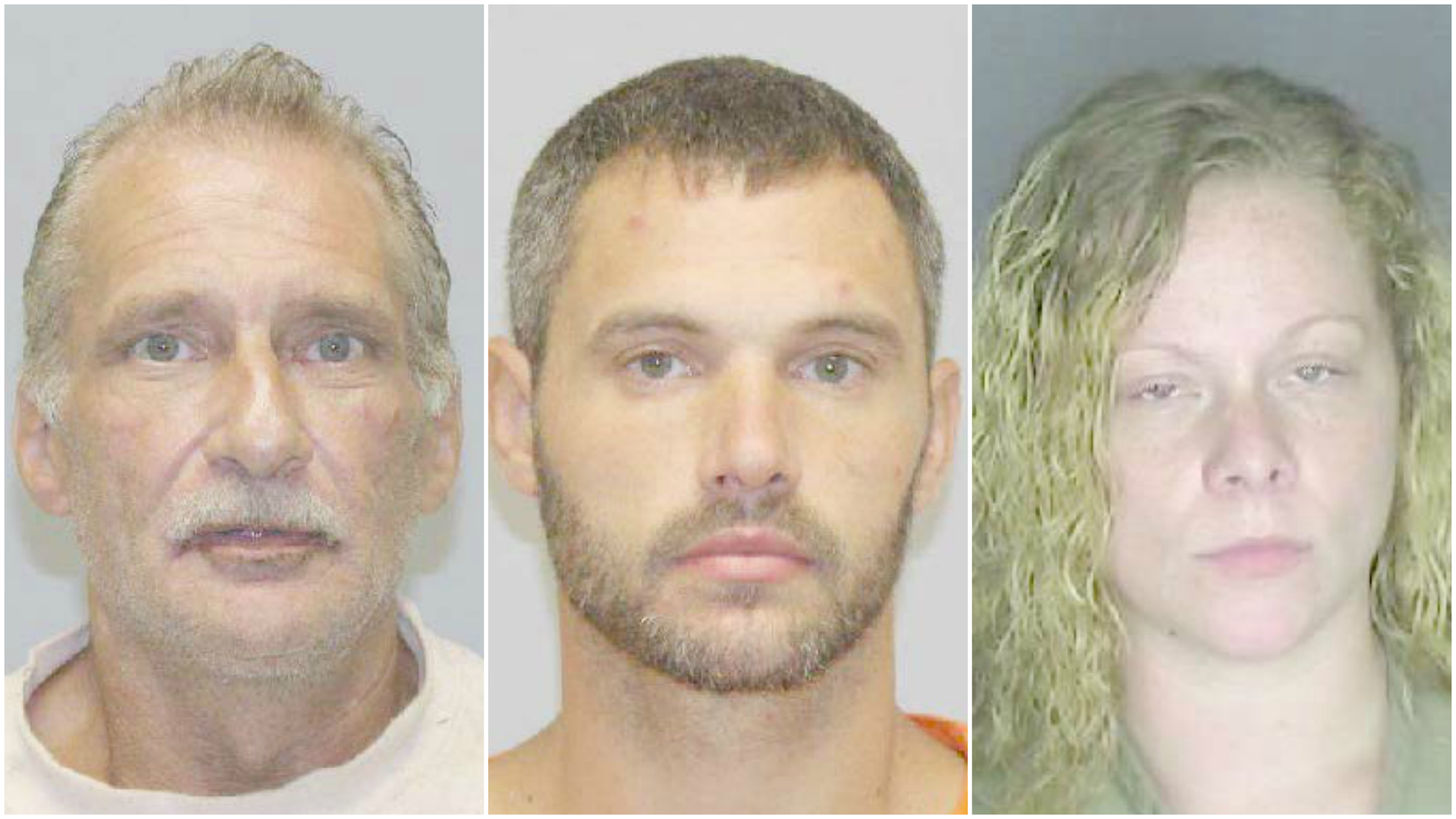 Blake, James and Delfino/ Madison County Sheriff's Office