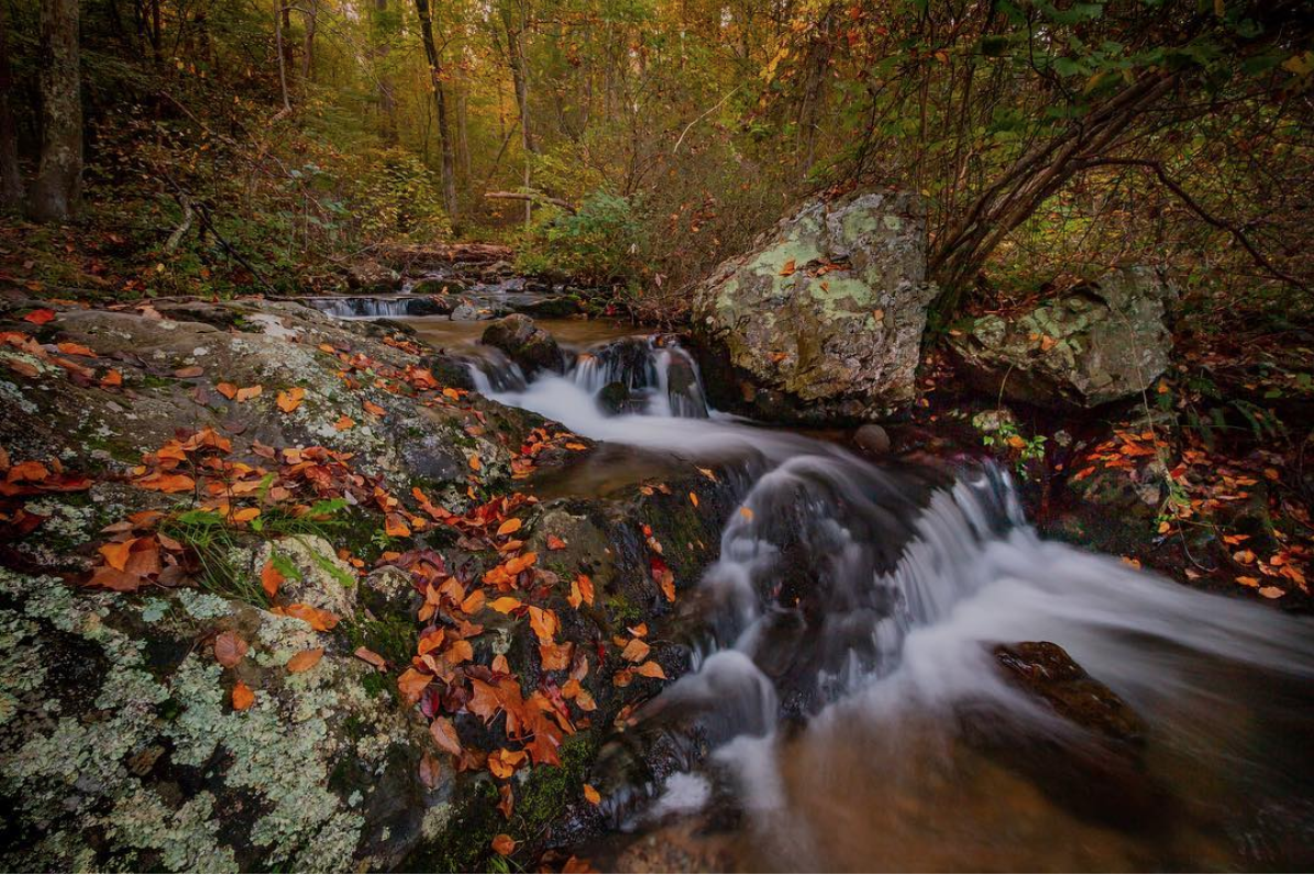 D.C. may be urban, but there are plenty of places that will make you forget the hustle and bustle of city life.{ } If you're not able to totally escape the sprawl, Rock Creek Park is a great option for a quick escape to nature. (Image via @jennsnaturephotography)