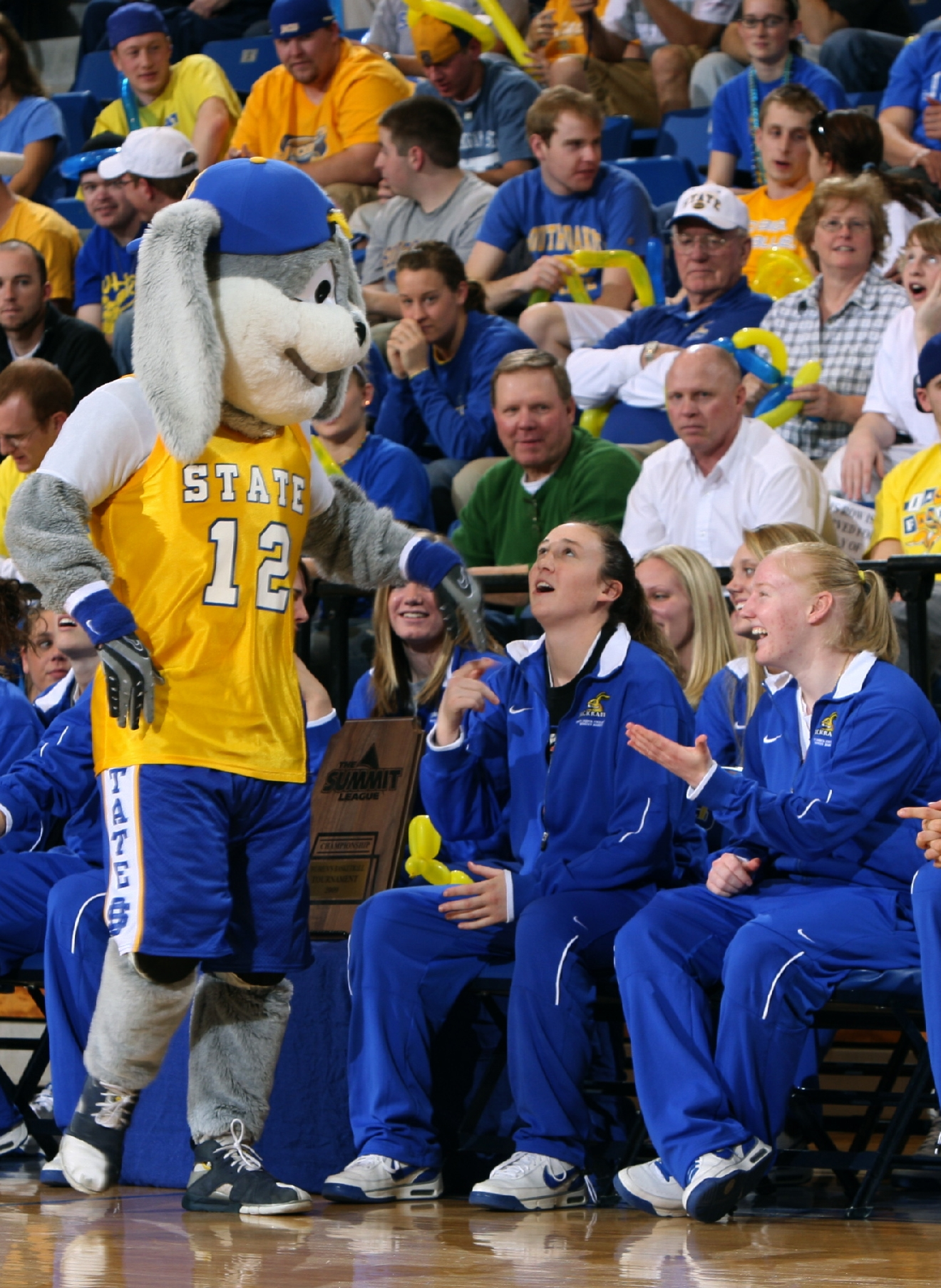bracket break ncaa nick quiz for the cats dogs sooners file in this 16 2009 file photo the south dakota state