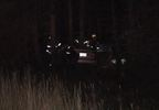 Car in accident with moose 3.JPG