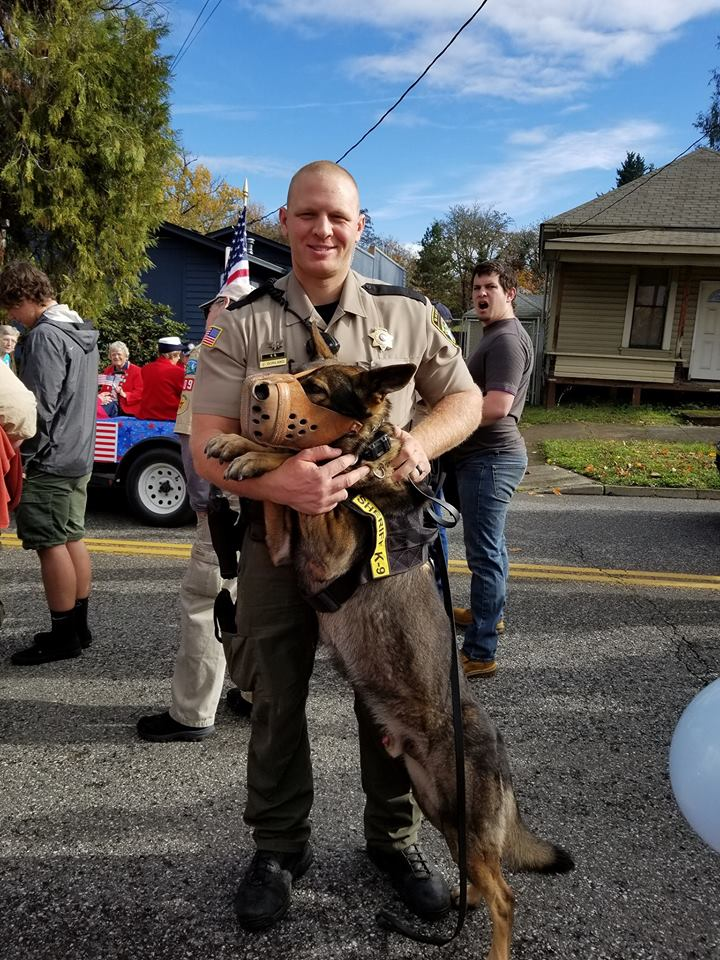 Images from the 2017 Douglas County Veterans Day Parade in downtown Roseburg, Ore., November 11, 2017. (courtesy Koree Tate)